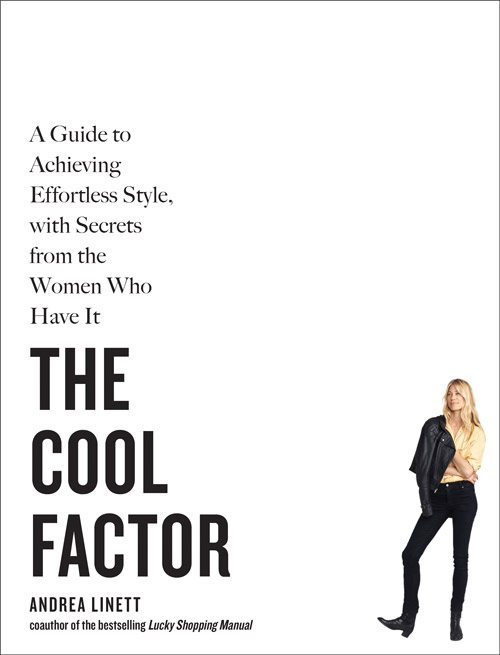 COVER-The-Cool-Factor-STROKED
